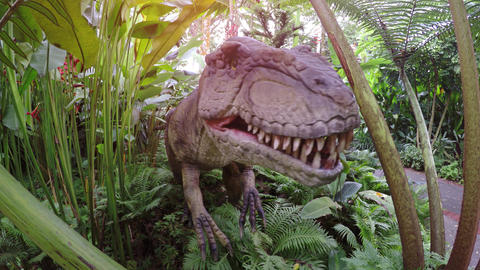 Animatronic dinosaur on display in an educational park in Singapore Footage