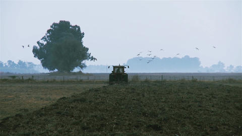 Tractor in the field, preparing the land for cultivation Footage