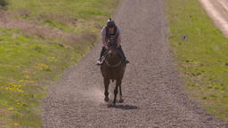 Slow motion clip of a racehorse galloping towards the camera Image