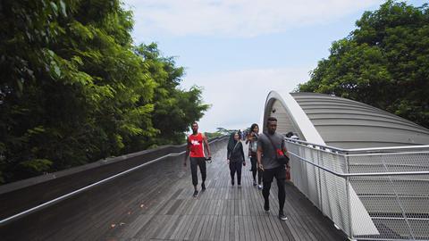 Visitors strolling along a broad. elevated walkway at Telok Blangah Hill Park Footage