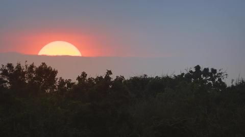 Sunset over the Wilderness at Yala National Park. Sri Lanka Footage