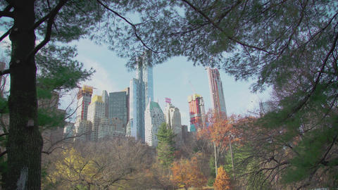 Manhattan view from Central Park through the trees NYC Filmmaterial