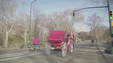 running people and horses in Central Park Footage