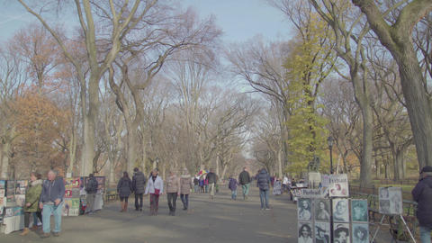 A Sunny day in Central Park and the square with pictures NYC Footage