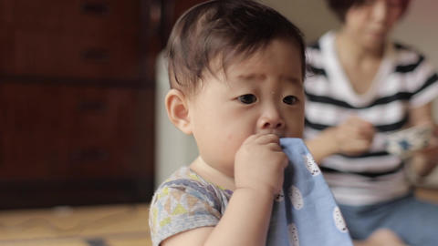 子供、赤ちゃん、ハイハイ、笑う、笑顔、楽しい、嬉しい、面白い、1才、1歳、人物、動画素材、日本人、公園、家族、家、幸せ、ベビー、ベイビー、baby、smile、 ライブ動画