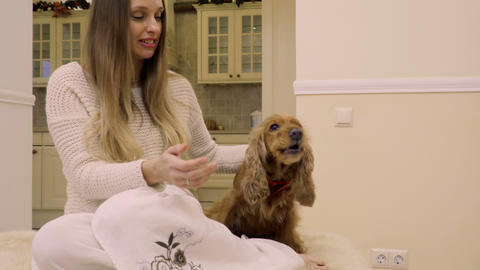 Young woman feed dog at home Footage