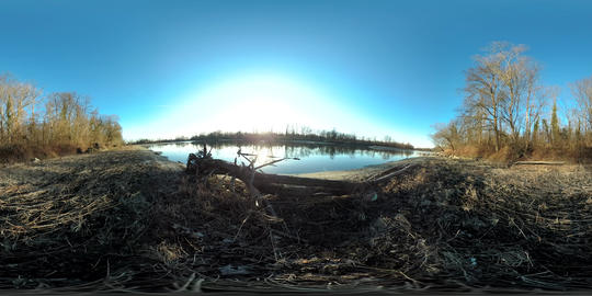 360 VR view of the shore of a river with a log on the shore VR 360° Video