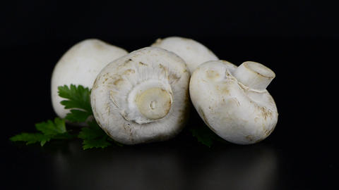 Champignon mushroom white agaricus with parsley Stock Video Footage