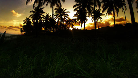 Time-lapse of Brazilian Sunset Stock Video Footage