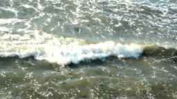 POLLUTED SEA Stock Video Footage