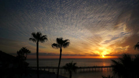 Orange Sunset with Pier and Palms Stock Video Footage