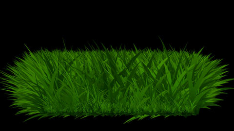 The growth of grass Animation