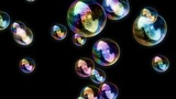 Soap Bubbles / Black Background - Calm Video Background Loop stock footage