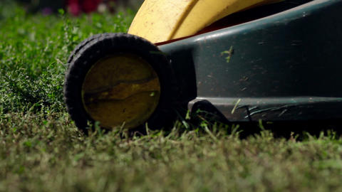 Lawn mower cutting grass Stock Video Footage