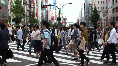 Japan Tokyo Shinjuku Kabukicho people crossing the street October 2017 Footage