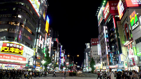 JAPAN TOKYO -SHINJUKU & SHIBUYA-