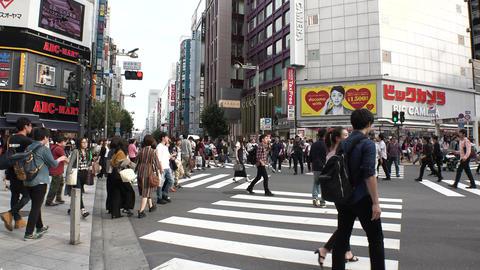 JAPAN TOKYO -SHINJUKU & SHIBUYA- 0
