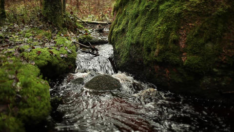 Stream at a large stone in the forest Footage