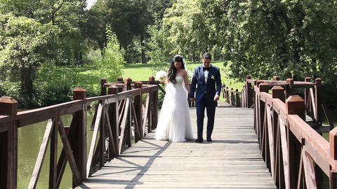 Bride and Groom Wedding Day Stock Video Footage