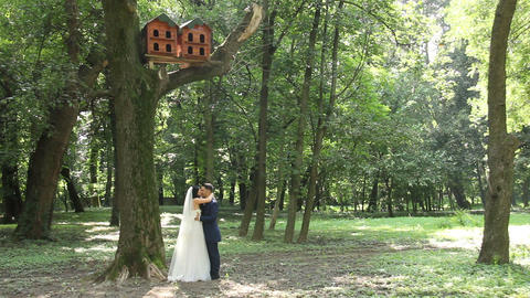 Hug Bride and Froom Wedding Day Footage