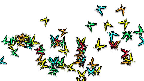 animated multicolored butterflies arrive, make up an inscription number 2018 Animation
