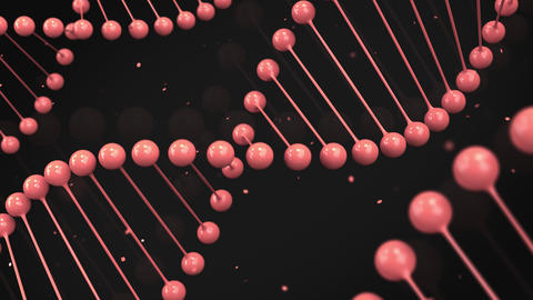 Gloss red model of DNA strand on black background CG動画素材