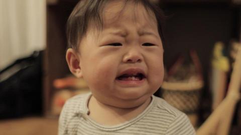 Child baby cry Japanese ライブ動画