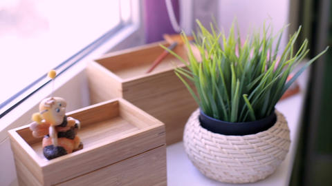 Green grass in a pot on the windowsill Footage