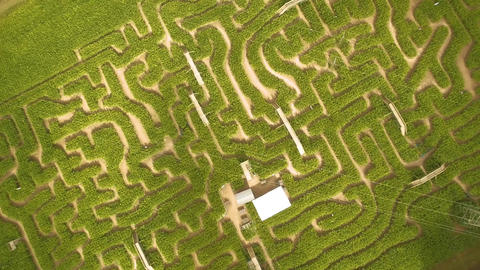 Spinning drone of maze Footage