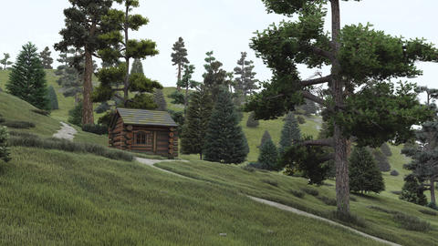 Wooden house in a pine forest at daytime Footage