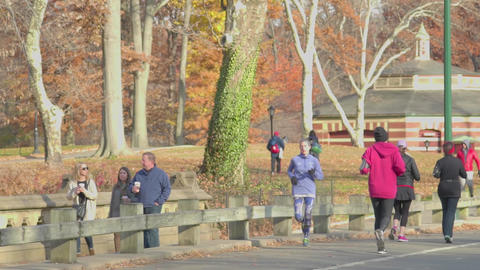 Central Park Jogging Runners Nyc Live Action