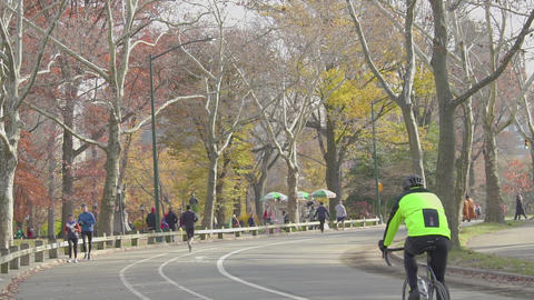 Bicycle Ride In Central Park Nyc, slow motion ビデオ
