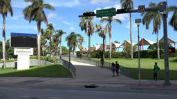USA Florida Miami palm trees at pedestrian walkway to Bayside Marketplace Footage
