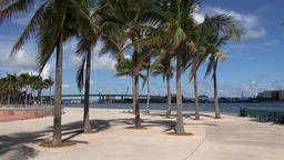 USA Florida Miami Downtown Bayfront Park Path roundabout with palm trees Image