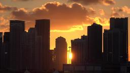 USA Florida dreamlike golden sunset behind Downtown Miami skyline 영상물