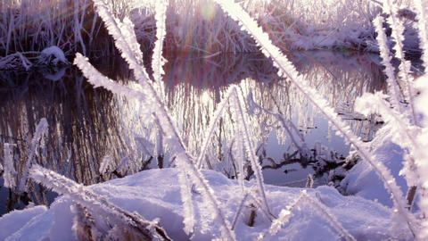 Frosty grass by slowly streaming foggy river Footage