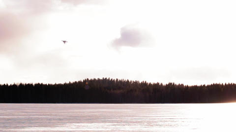 Drone flying straight towards sunset Live Action