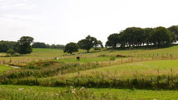England's green and pleasant land Footage