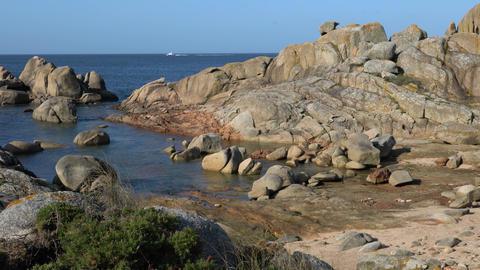 Landscapes - Coastline