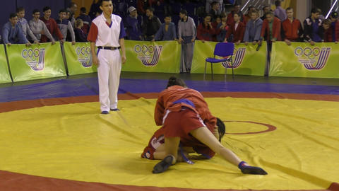 Girls compete in Sambo Live Action
