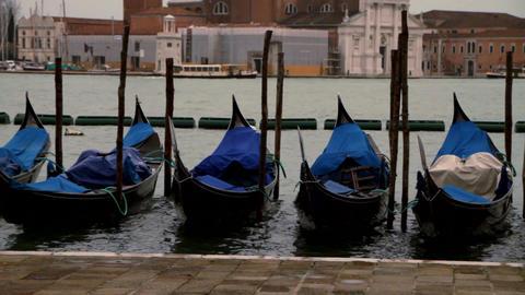 Gondola service - Venice, Venezia Live Action