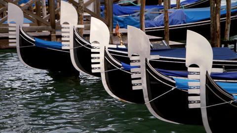 Gondolas on canal - Venice, Venezia Live Action