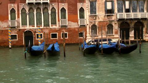 Venetian gondolas - Venice, Venezia Live Action