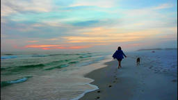 Beautiful and dramatic sunset evening walking dog slomo Footage