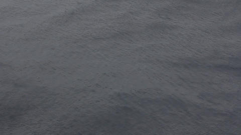 Fans of the wind 1. The surface of the Barents sea during katabatic wind Footage