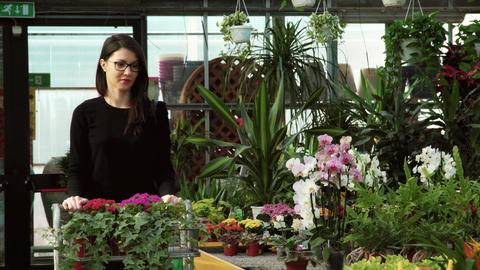 Client Shopping Buying Flowers Smiling To Camera In Florist Shop Archivo