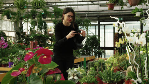 Woman Shopping Taking Picture Of Flowers In Flower Shop Footage