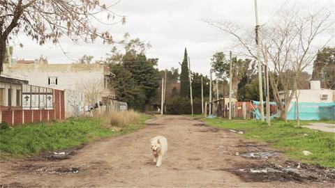 Poor Neighborhood Of Buenos Aires GIF