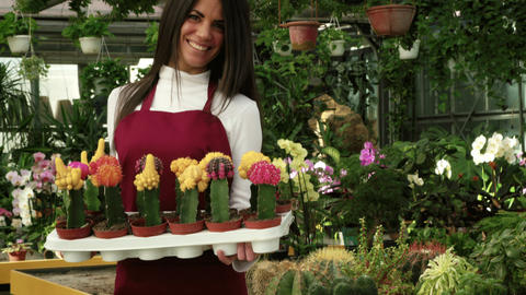 Young Woman Working As Florist In Flower Shop And Greenhouse Bild