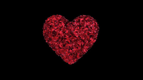 Fixated heart animation of red rose petals Bild